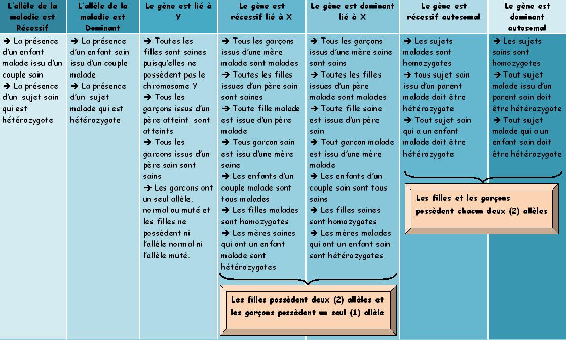 bac sciences gntique - Resume Francais Bac Science